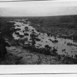 El Hadem : Après les pluies - Vent de sable (Libye avril 1942)