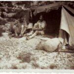 1943 : Tunisie (BIMP)